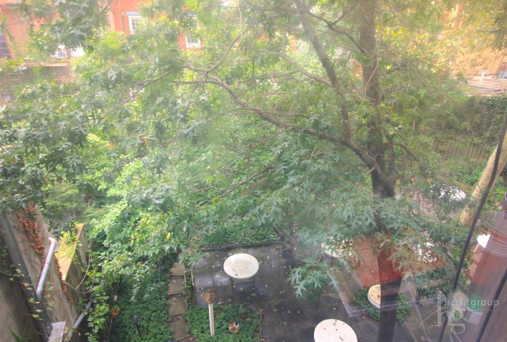 Quiet courtyard view