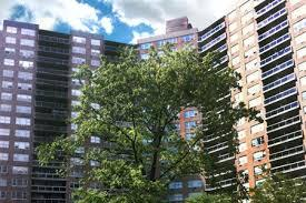 4 Apartment in Forest Hills