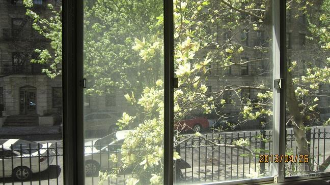 CARNEGIE HILL / 5TH AVE / CENTRAL PK~ESTATE SALE~SUNNY LRG JR 4 / 1 BR-$399,000