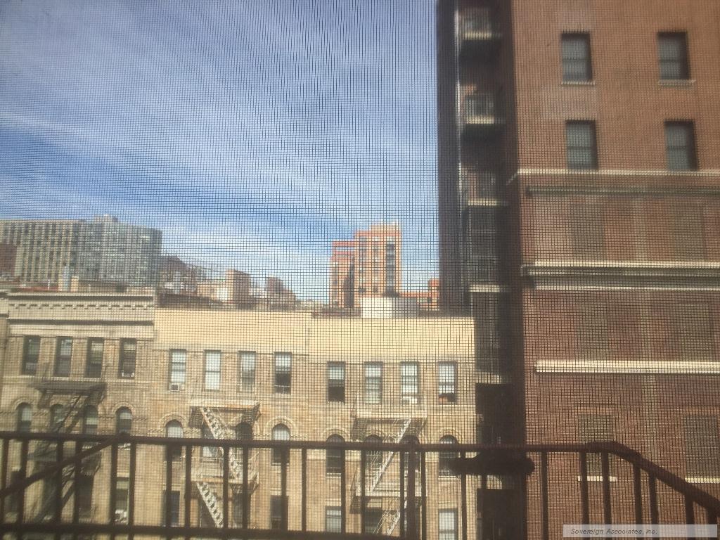 City Open Views