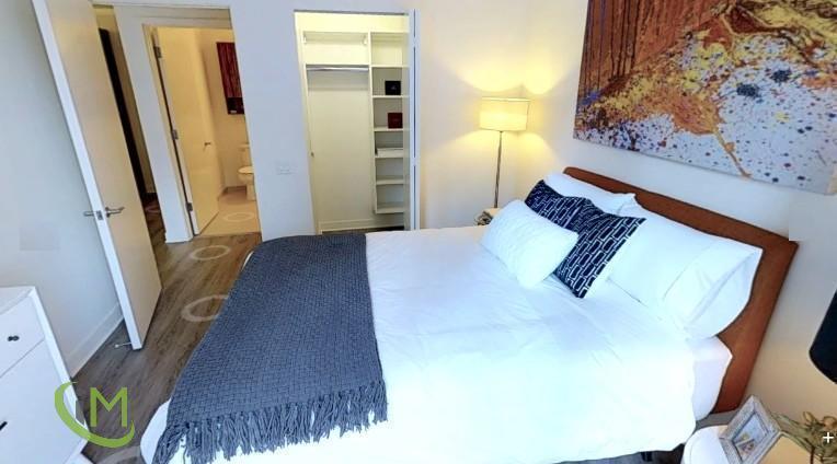 1 Bedroom Apartment in Streeterville