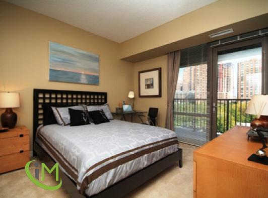 1 Bedroom Apartment in South Loop