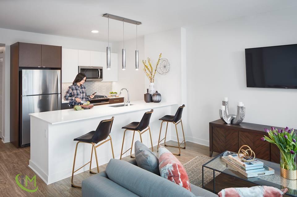 Studio Apartment in South Loop