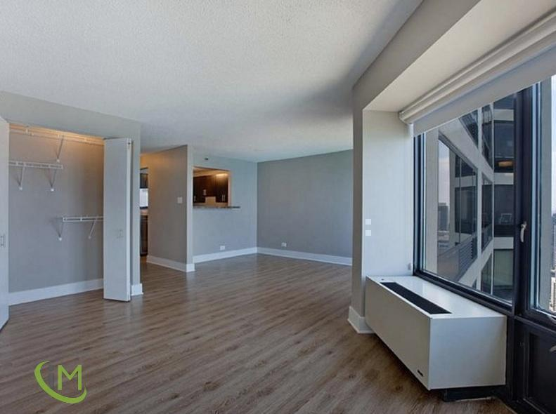 1.5 Bedroom Apartment in Streeterville