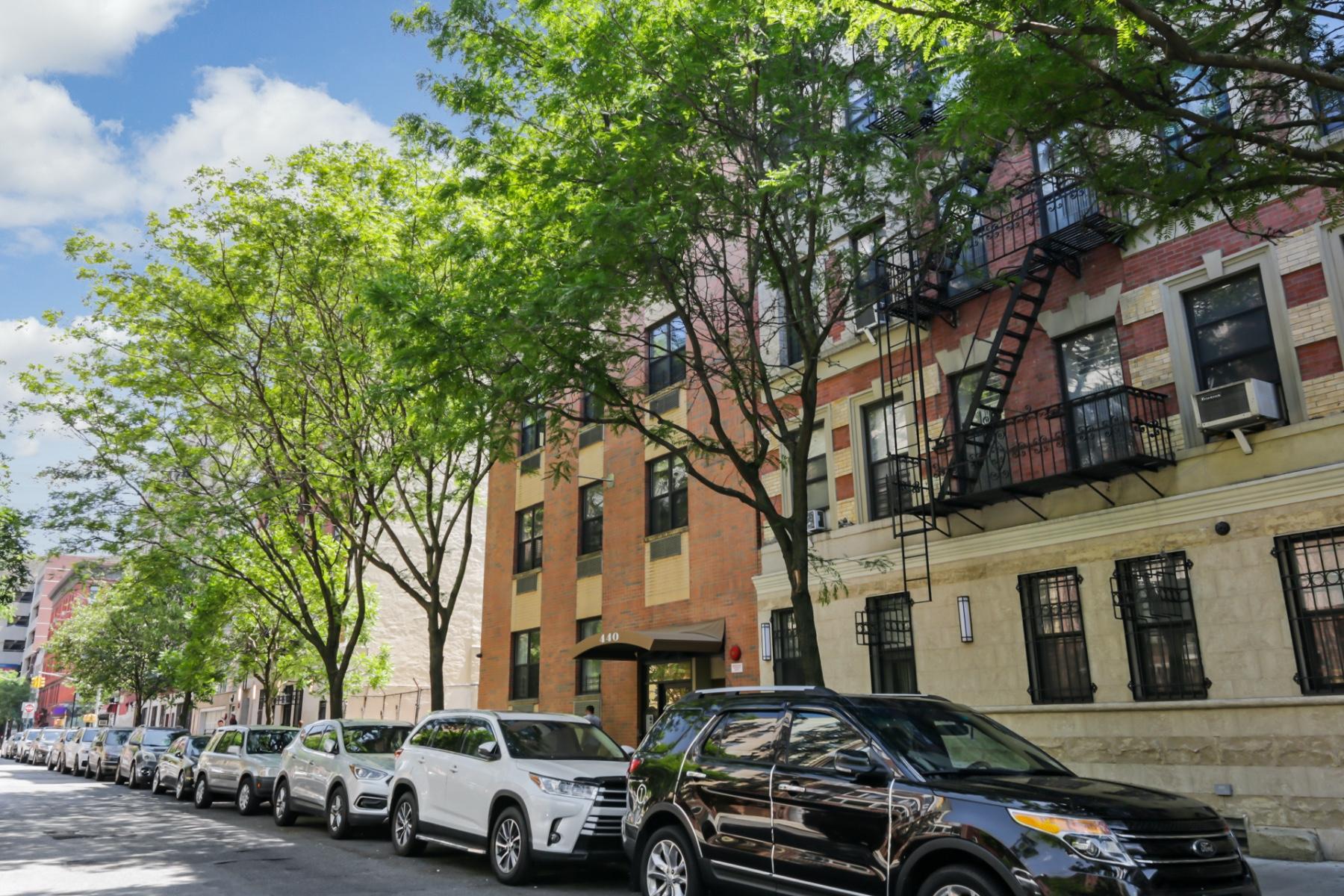 440 East 117th Street East Harlem New York NY 10035