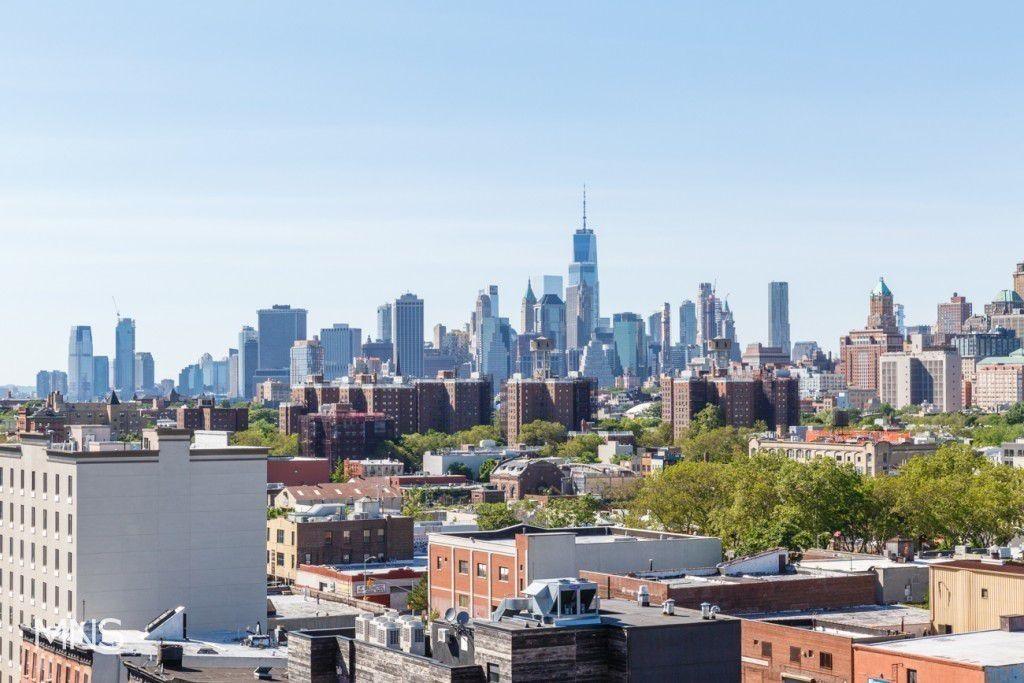 223 4th Avenue Park Slope Brooklyn NY 11215