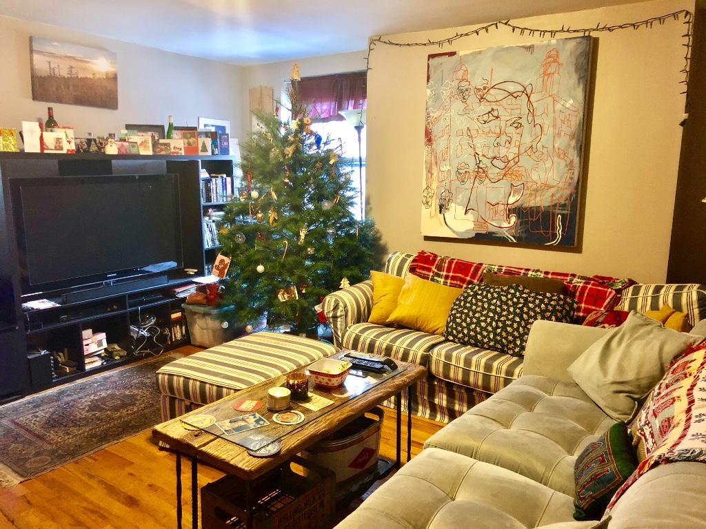 3 Apartment in Boerum