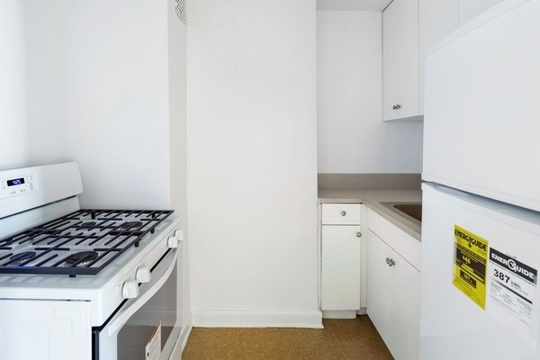 Studio Apartment in Flushing