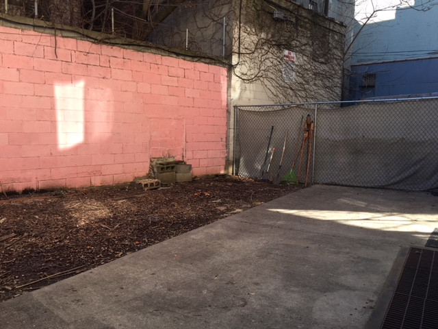 Backyard A