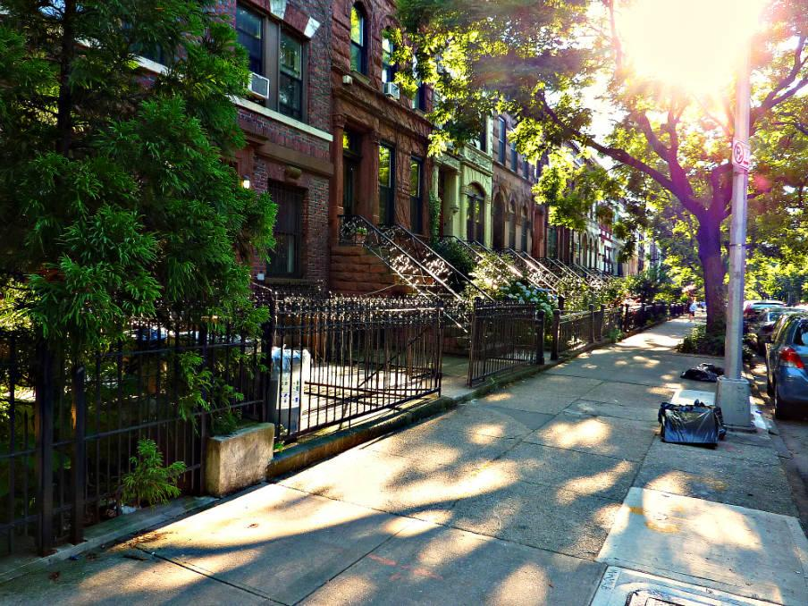 1.5 Apartment in Prospect Heights