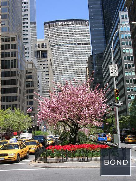38th & Park Avenue View