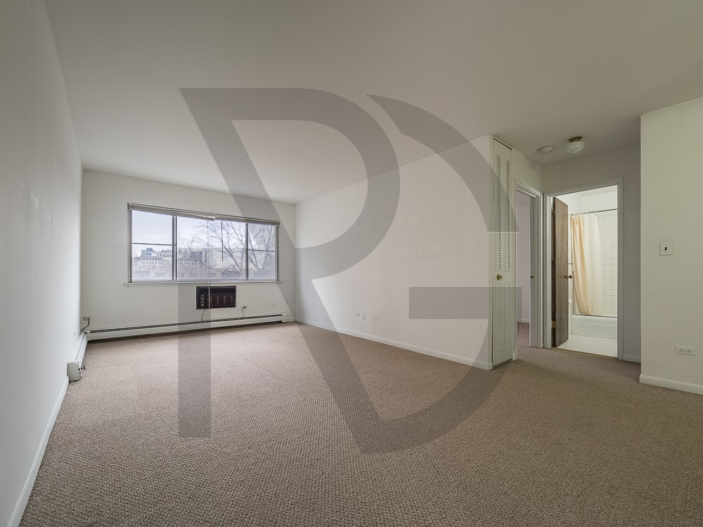 1 Apartment in Lakeview East