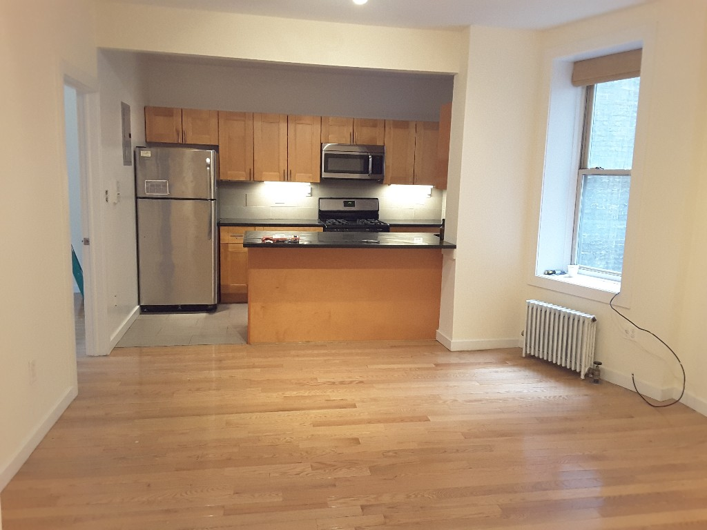 3 Apartment in Fort Greene